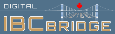 International Business Cooperation Digital Bridge